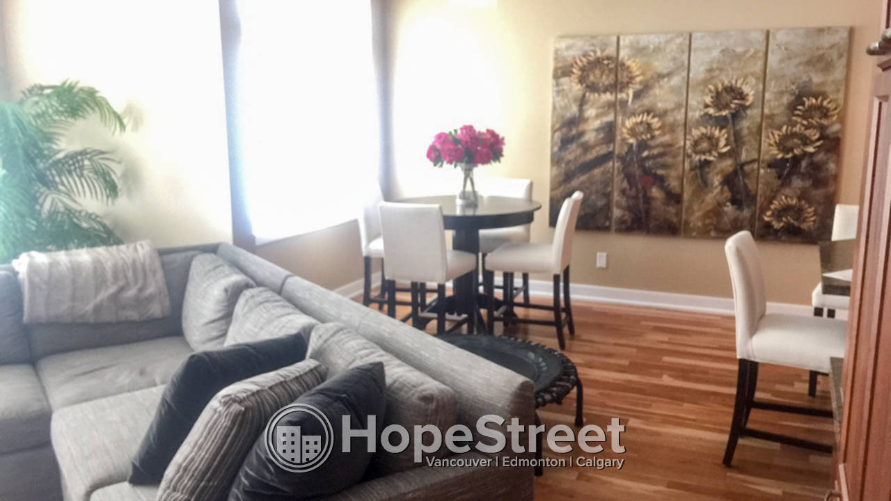 furnished 1 bedroom apartment for rent in eau claire hope street
